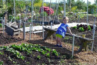 2014-05-01 little gardener